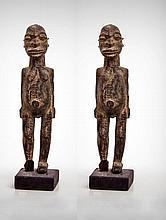 A Pair of Gambari Male and Female Guardian
