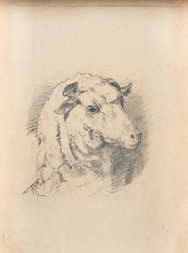 KONSTANTIN APOLLONOVITCH SAVITSKY 1844 Taganrog - Pensa 1905 Sheep Pencil on paper, visible size 19 by 14 cm, lower left in cyrillic signed 'K. Savitski', on the backside with an old label, min. damaged, behind glas.