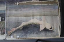 Ellis Family Archive: Clifford Ellis 1907-1985, oil on canvas basking shark