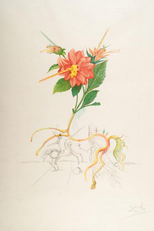 Salvador Dali, 1904-1989, Dahlia unicornis