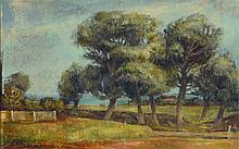 Carl Otto Mueller