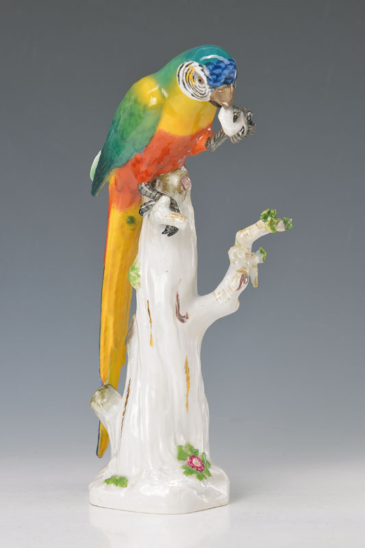 parrot on stump, Meissen