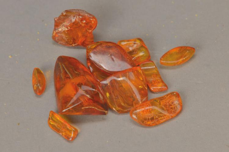 10 baltic ambers