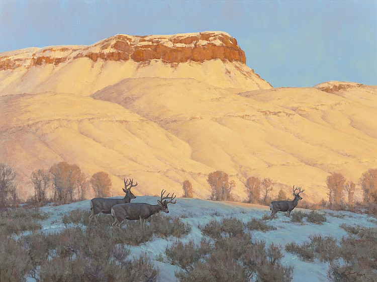 SCOTT YEAGER (American, b. 1965) Mule Deer on Winter Ra