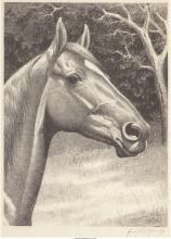 George Ford Morris (American, 1873-1960) Man O' War, 1921 Lithograph 12-3/8 x 9-
