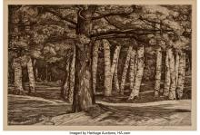 Lot 21077: Luigi Lucioni (American, 1900-1988) Pine in the Birches, 1958 Etching on heavy w