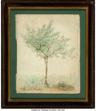 Lot 21158: A. Grinevato (19th Century) A Pear Tree Drawn from Nature in Columbia, South Car