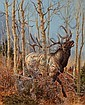 Elk in the Woods, Tom Beecham, Click for value