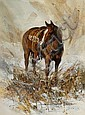 Horse, Joe Bohler, Click for value