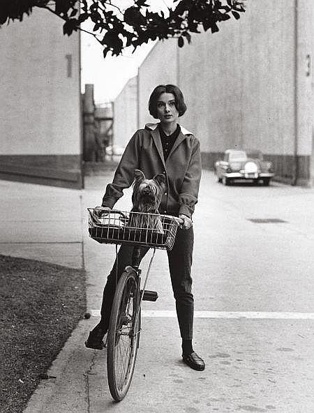 SID AVERY (American, 1918-2002) Audrey Hepburn on her B