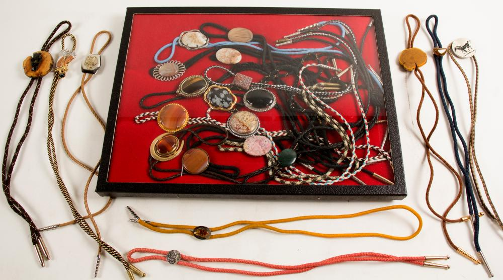 Bolo Ties Collection, 21 Ties   (61343)