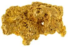 Buffalo Gold Nugget from Sierra City Area