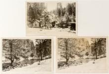 Graeagle Mine Photographs