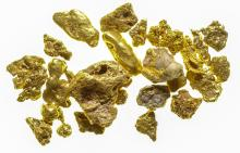 Downieville Gold Nuggets
