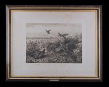 A VINTAGE BLACK AND WHITE PRINT OF ARCHIBALD THORBURN''S ''THE LAST BIT OF COVER'',