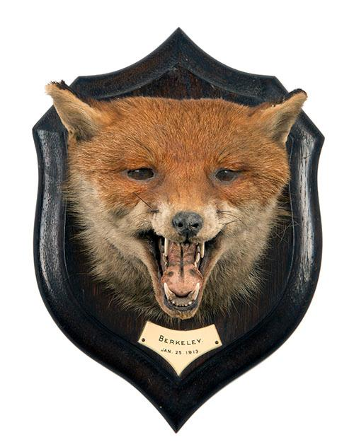 ROWLAND WARD A VINTAGE FOX MASK,