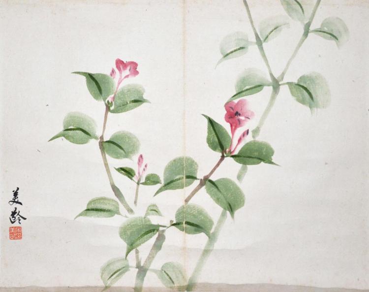 宋美龄 (1897 - 2003) 花卉 Song Meiling Flower