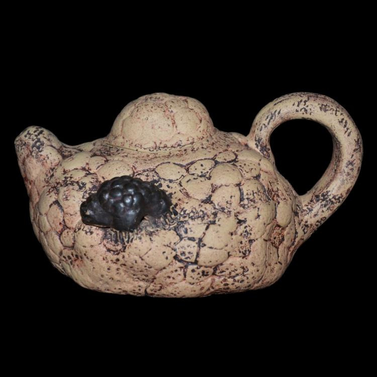 紫砂树瘿甲虫壶 Zisha Burl Teapot with Applied Insects