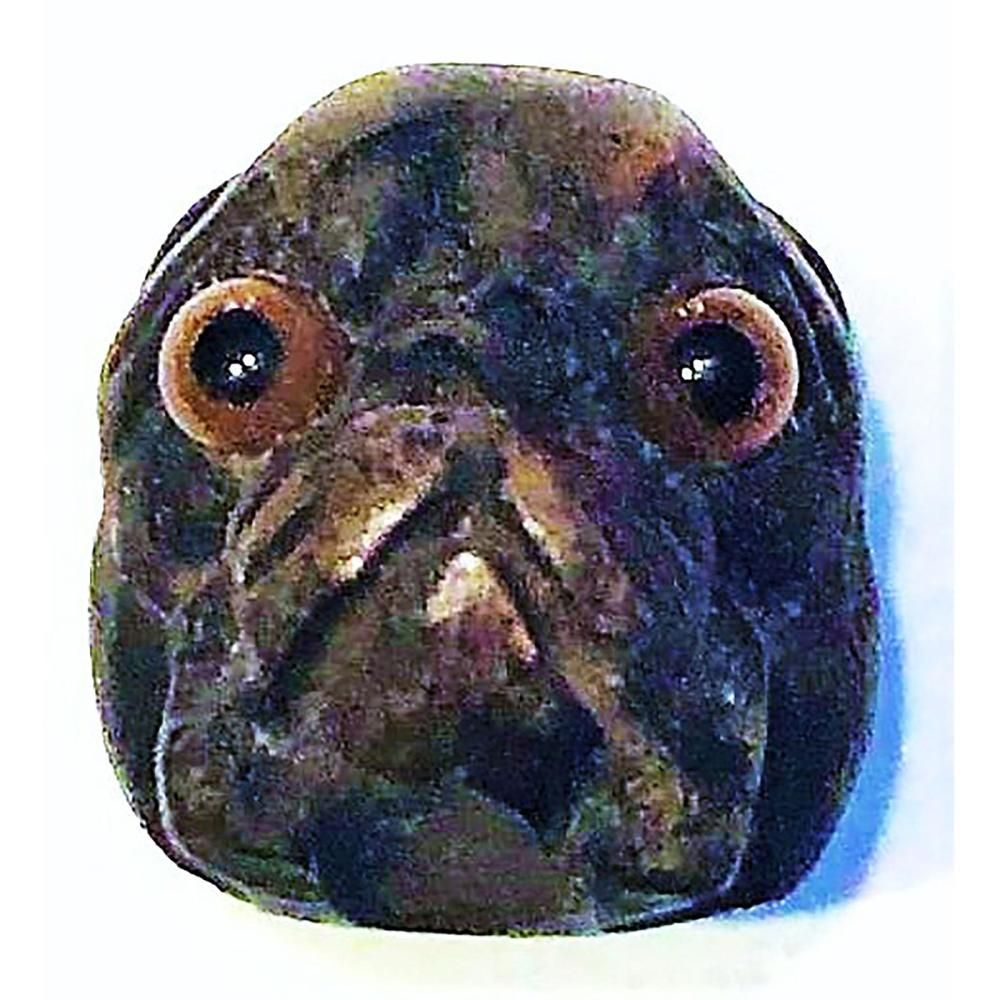 A CARVED DIVISION ONE REALISTIC DOG HEAD BUTTON