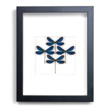 11 X 14 AZURE DAMSELFLY DIAMOND NATURAL SPECIMEN ART BY CHRISTOPHER MARLEY