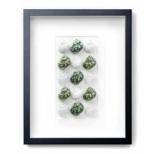 16 X 20 JADE TURBOS NATURAL SPECIMEN ART BY CHRISTOPHER MARLEY