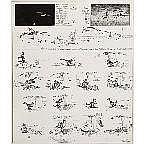 George Herriman (1880-1944) Sunday comic strip,