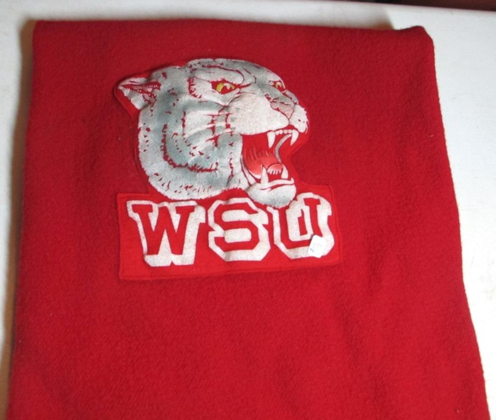 VINTAGE WSU COUGARS WASHINGTON STATE FOOTBALL PENDLETON FRINGED WOOL STADIUM BLANKET