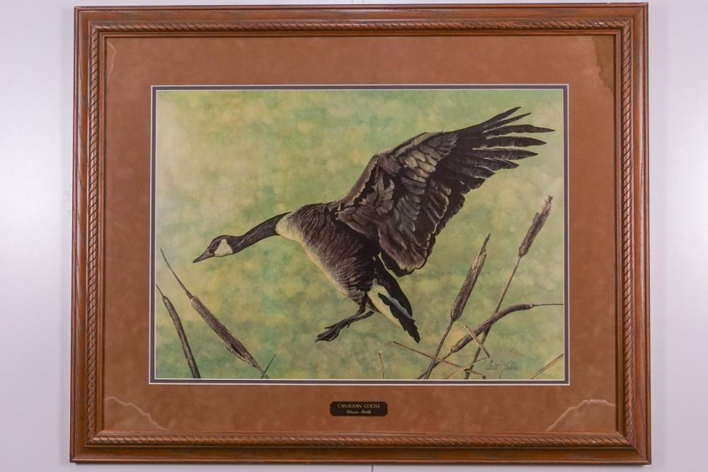 "Chester Fields, ""Canadian Goose"" Print"