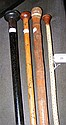 Antique vertebrae walking stick and three others