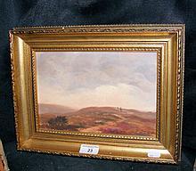 ANNE TOMS - 16.5cm x 24.5cm - oil on canvas -