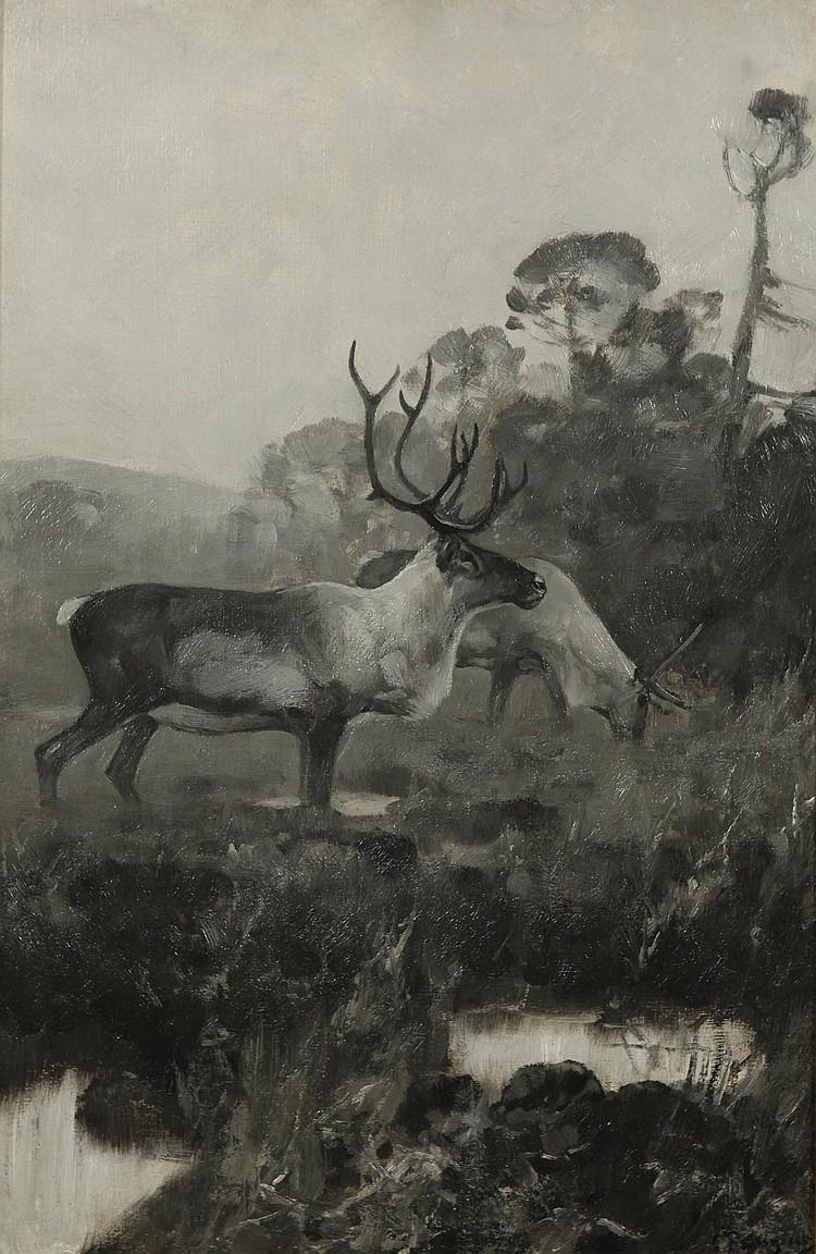 Rungius, Carl, 1869-1959