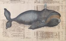 CONTINENTAL HAND EMBELLISHED OFFSET LITHOGRAPH OF RIGHT WHALE ON FOLIO LEDGER PAGE, DATED 1717. SHEET 18 1/4 X 29