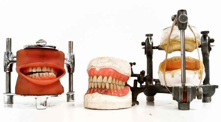 LOT (3) VINTAGE ARTICULATED DENTAL MODELS. HEIGHT 3-6 1/2