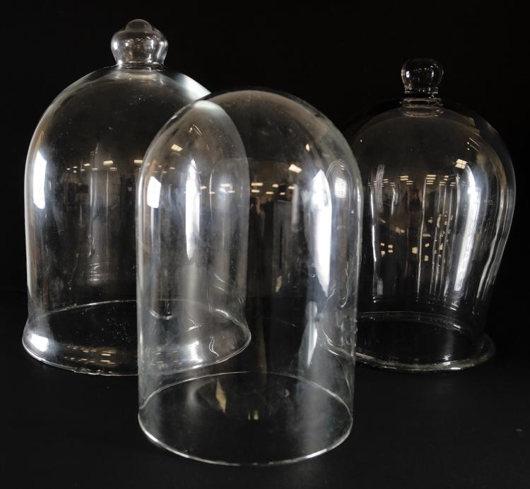 LOT (3) GLASS CLOCHE/DOMES. TALLEST/HEIGHT 17