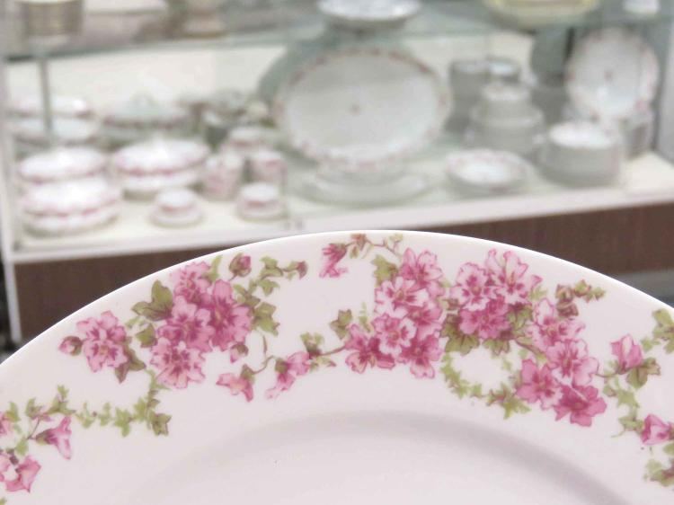 CHARLES HAVILAND LIMOGES DECORATED PORCELAIN DINNER SERVICE FOR (9) WITH EXTRAS (76) PIECES INCLUDING (10) DINNER PLATES, 9 3/4