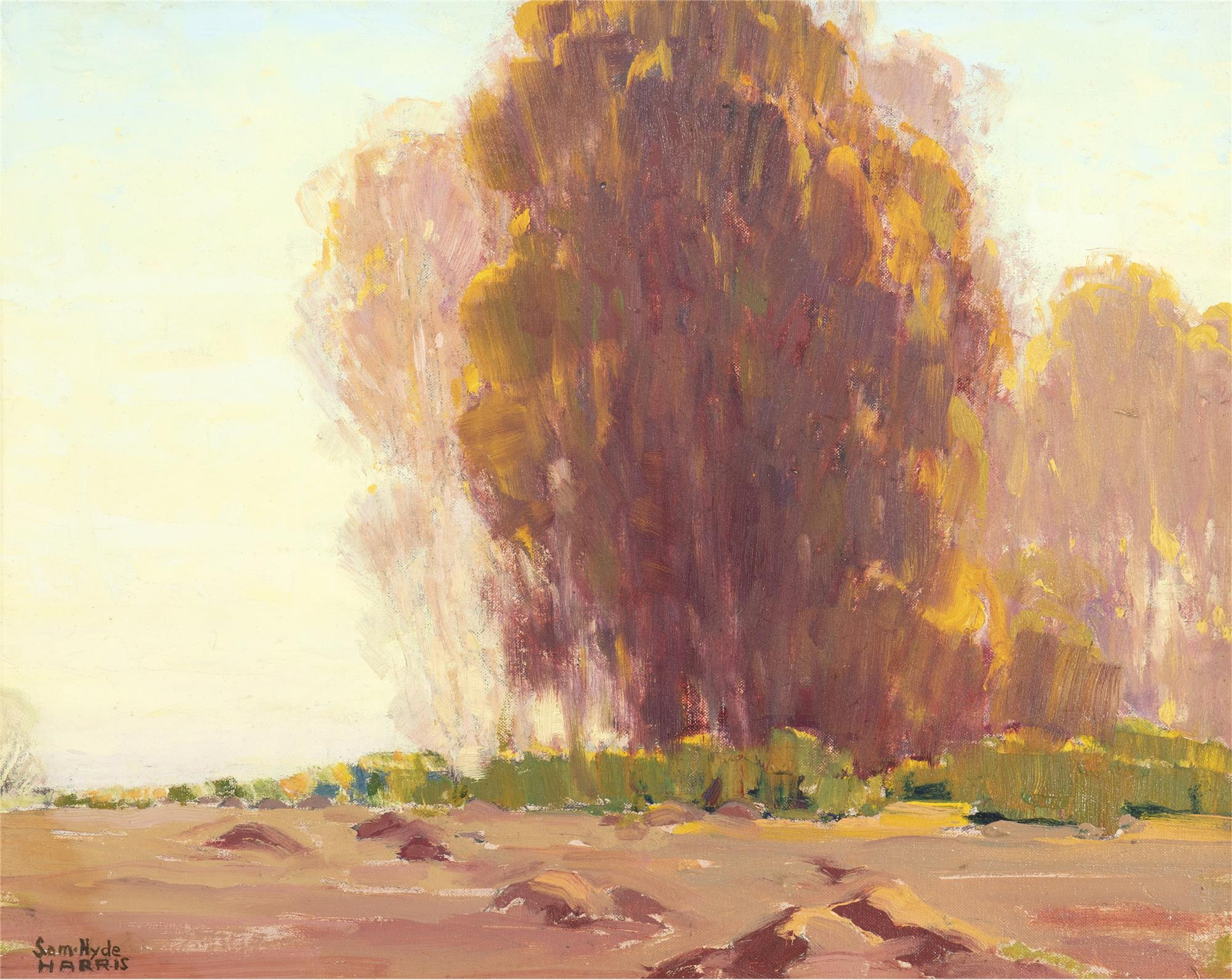 """Sam Hyde Harris, (1889-1977, Alhambra, CA), Tree in a landscape, Oil on canvas laid to board, 16"""" H x 20"""" W"""