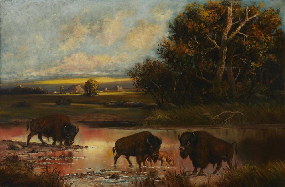 """Henry Herman Cross, (1837-1918, Buffalo in a river landscape, Oil on canvas, 30"""" H x 45"""" W"""