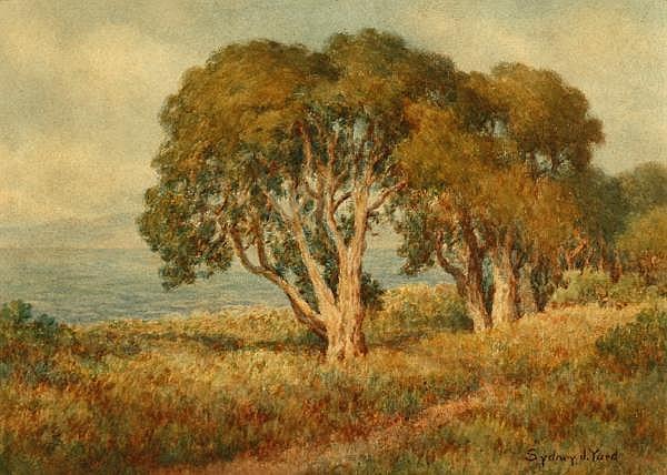 Sydney J. Yard (1855-1909 Monterey, CA)