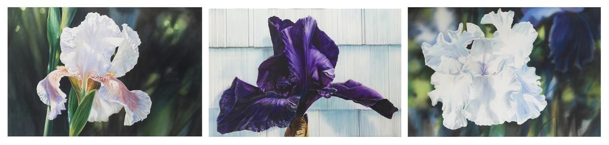"Kirk Lybecker, (1951-* Portland, OR), ""Night Shade,"" ""Northside Delecato"" and Untitled iris, 1988; three works, Watercolor on paper und"