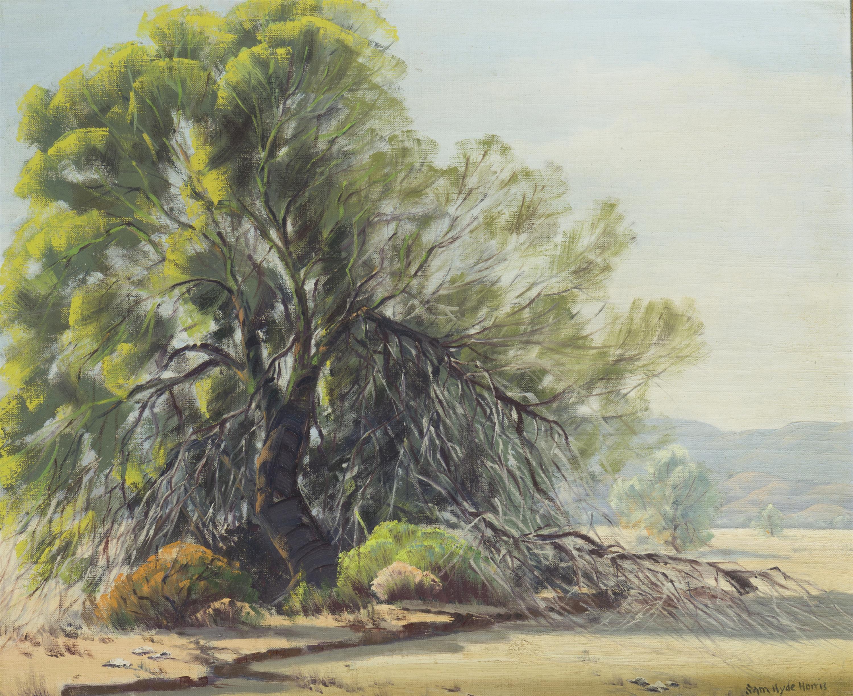 "Sam Hyde Harris, (1889-1977 Alhambra, CA), ""Sunshine and Shadow"", Oil on canvas, 20"" H x 24"" W"