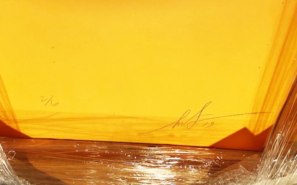 Shepard Fairey, (b. 1970, American),