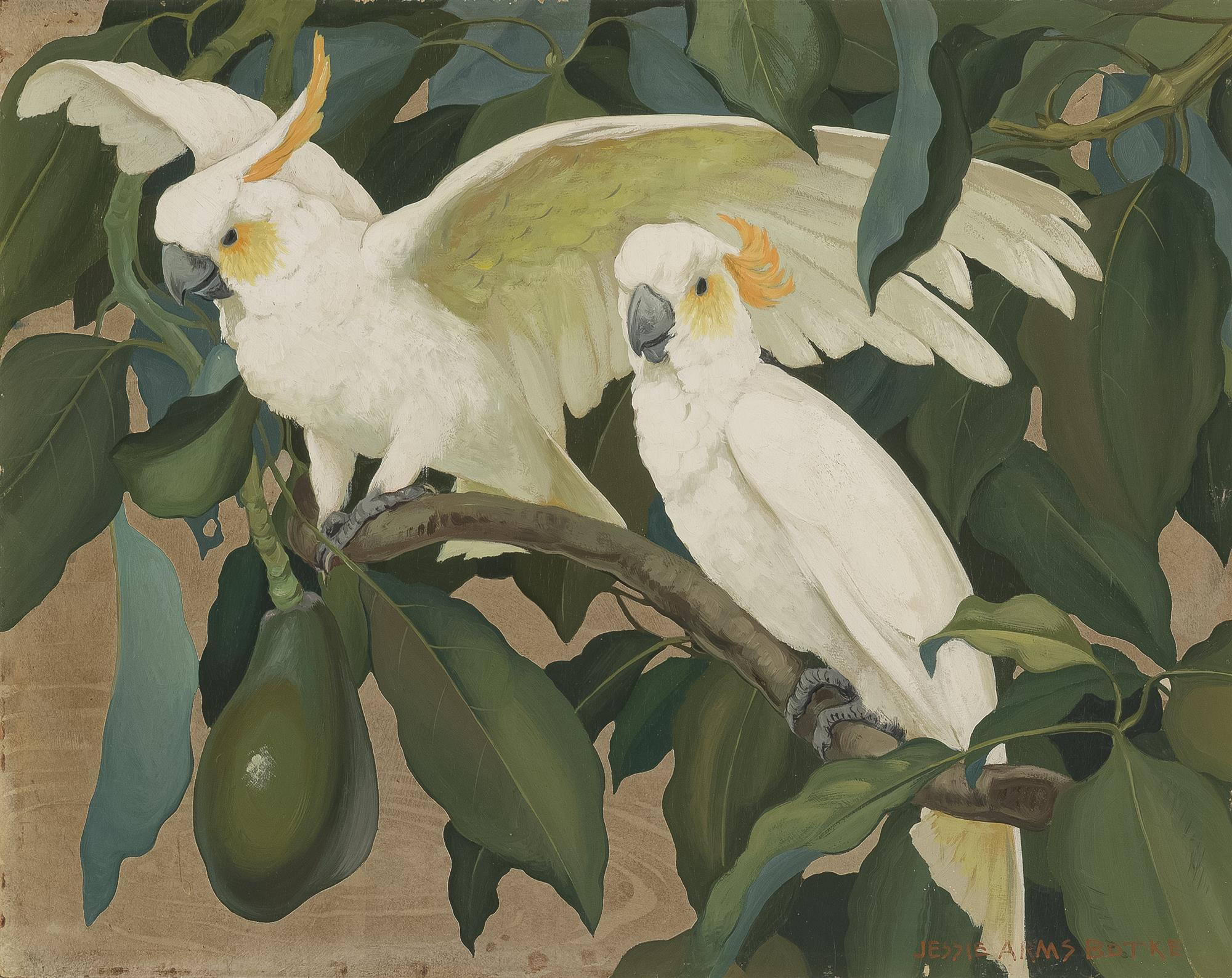 """Jessie Arms Botke, (1883-1971 Santa Paula, CA), White cockatoos in an avocado tree, Oil and gold leaf on canvasboard, 16"""" H x 20"""" W"""