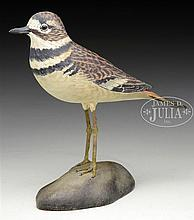 EXCEPTIONAL DECORATIVE KILLDEER PLOVER BY A.E. CROWELL, EAST HARWICH, MA.