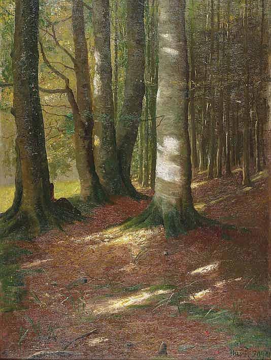 Eschwege, F. A. Elmar von