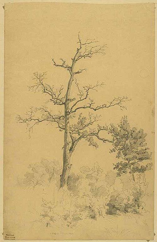 Wolf, Max (1824 Gissigheim - Heidelberg 1901).