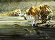 """Grant Hacking (South African, b.1964-) Oil Painting on Canvas """"Two Tigers & Water"""""""