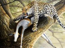 """Grant Hacking """"Cheetah in a Tree"""" Oil on Canvas"""