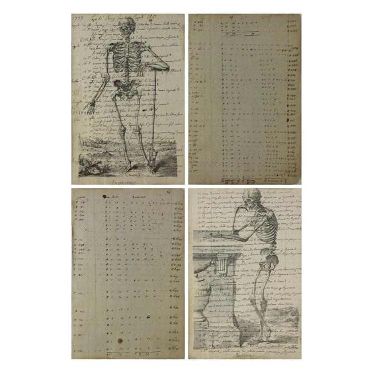 Two Pages from Circa 1757 Italian Book on Anatomy