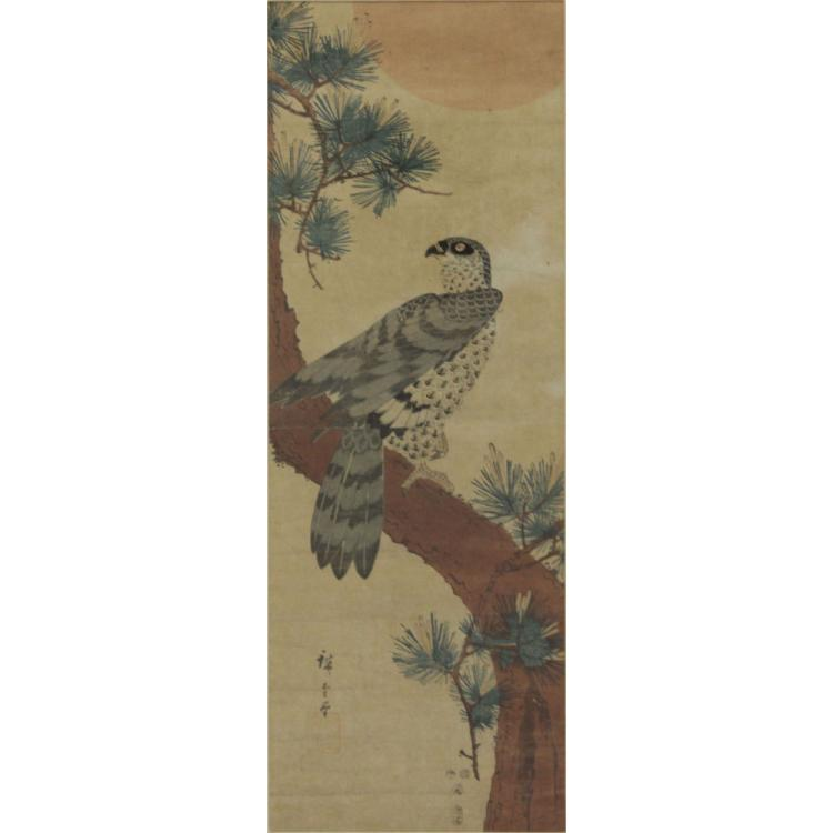 19th Century Japanese Hawk on Matsu Tree Scroll Painting on Paper
