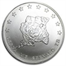 1 oz Suriname $10 Silver Coin .999 Fine 2013